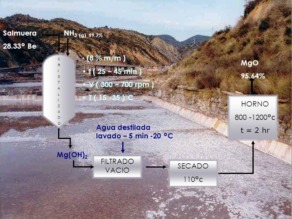 Agosto 2007 Salmuera 28.33 ° Be NH 3 (g) 99.7% Mg(OH) 2 SECADO 110 °c FILTRADO VACIO HORNO 800 -1200 °c t = 2 hr (8 % m/m ) t ( 25 – 45 min ) V ( 300