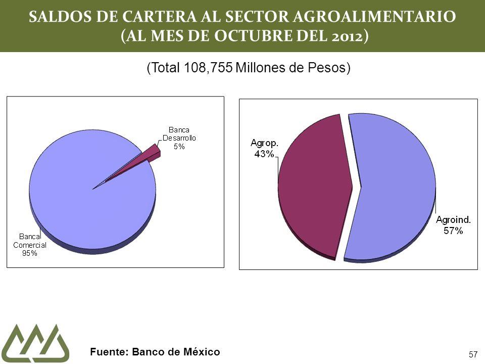 SALDOS DE CARTERA AL SECTOR AGROALIMENTARIO (AL MES DE OCTUBRE DEL 2012) Fuente: Banco de México (Total 108,755 Millones de Pesos) 57