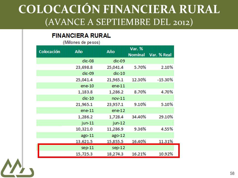 COLOCACIÓN FINANCIERA RURAL (AVANCE A SEPTIEMBRE DEL 2012) 58