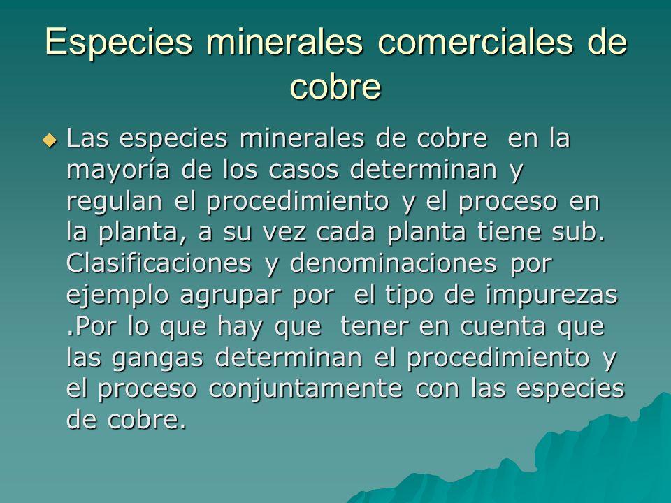 Los minerales mas frecuentes que llegan a las plantas metalúrgicas Sulfuros.