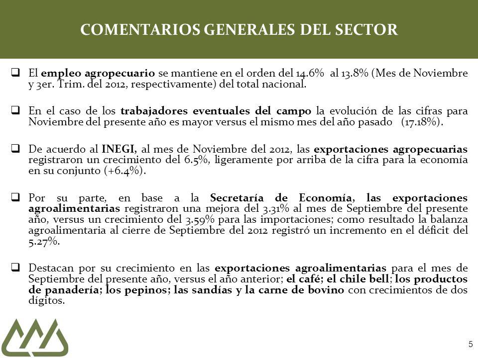 5 COMENTARIOS GENERALES DEL SECTOR El empleo agropecuario se mantiene en el orden del 14.6% al 13.8% (Mes de Noviembre y 3er. Trim. del 2012, respecti