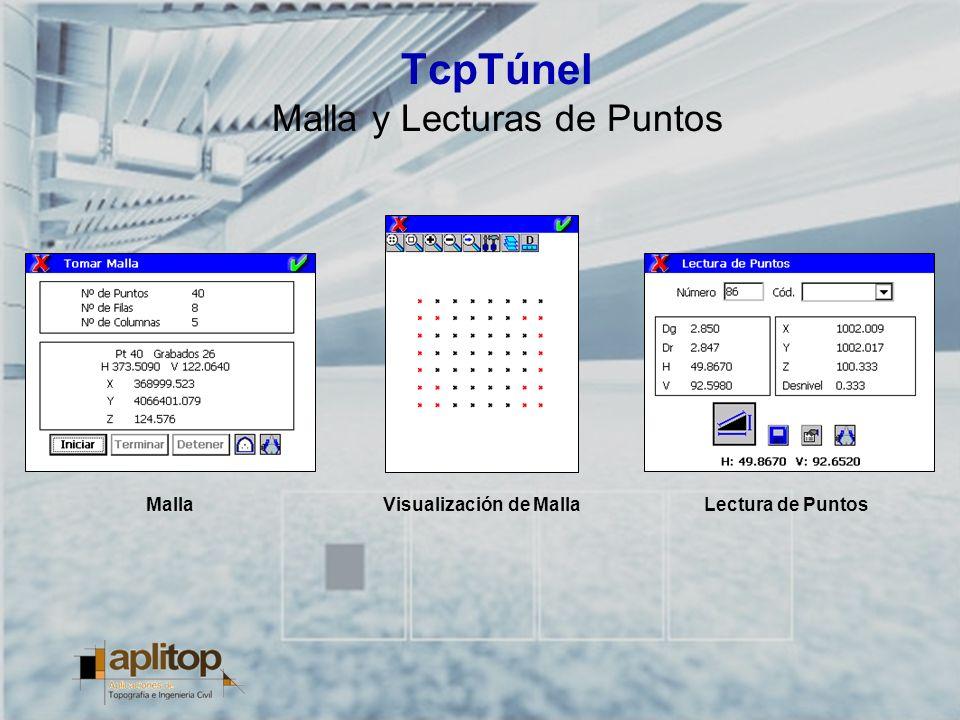 TcpTúnel Malla y Lecturas de Puntos MallaLectura de PuntosVisualización de Malla