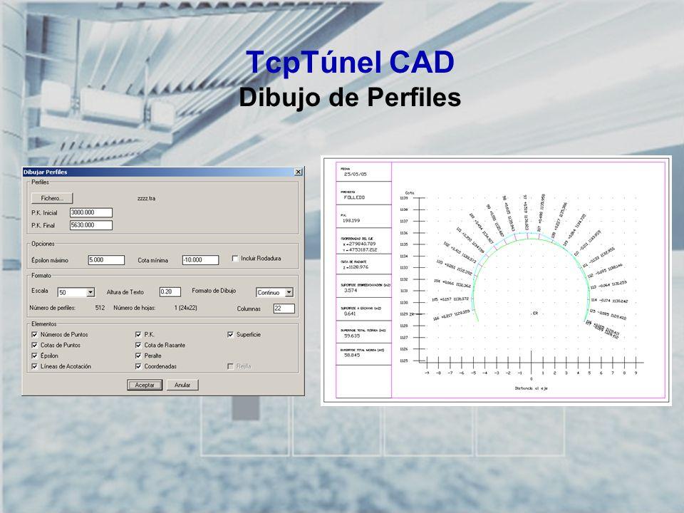 TCP-TÚNEL – Replanteo y Toma de Datos en Túneles TcpTúnel CAD Dibujo de Perfiles