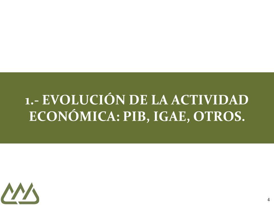 4 1.- EVOLUCIÓN DE LA ACTIVIDAD ECONÓMICA: PIB, IGAE, OTROS.