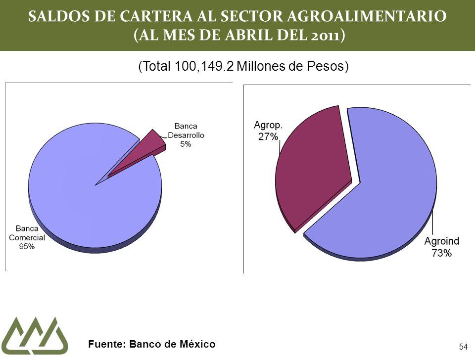 SALDOS DE CARTERA AL SECTOR AGROALIMENTARIO (AL MES DE ABRIL DEL 2011) Fuente: Banco de México (Total 100,149.2 Millones de Pesos) 54
