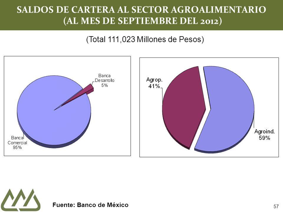 SALDOS DE CARTERA AL SECTOR AGROALIMENTARIO (AL MES DE SEPTIEMBRE DEL 2012) Fuente: Banco de México (Total 111,023 Millones de Pesos) 57