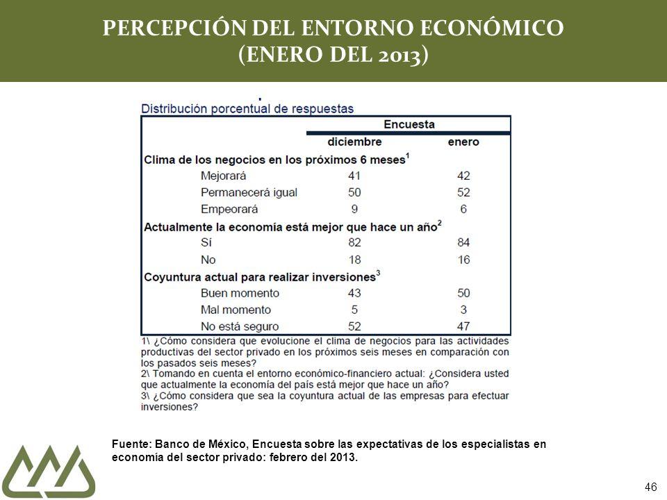 46 PERCEPCIÓN DEL ENTORNO ECONÓMICO (ENERO DEL 2013) Fuente: Banco de México, Encuesta sobre las expectativas de los especialistas en economía del sec