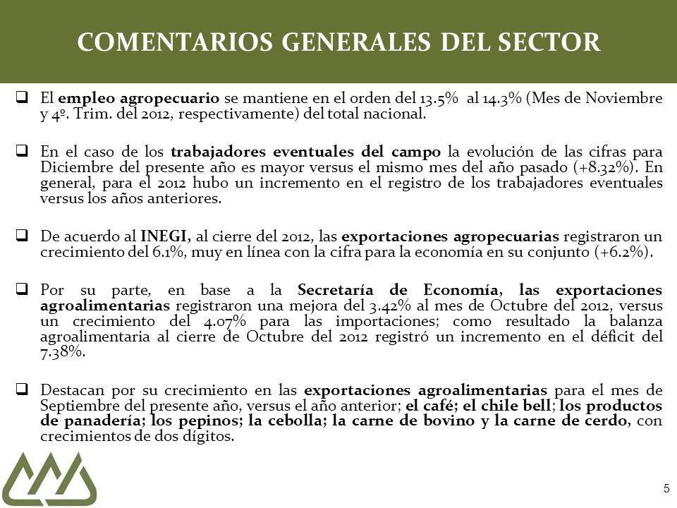 5 COMENTARIOS GENERALES DEL SECTOR El empleo agropecuario se mantiene en el orden del 13.5% al 14.3% (Mes de Noviembre y 4º. Trim. del 2012, respectiv