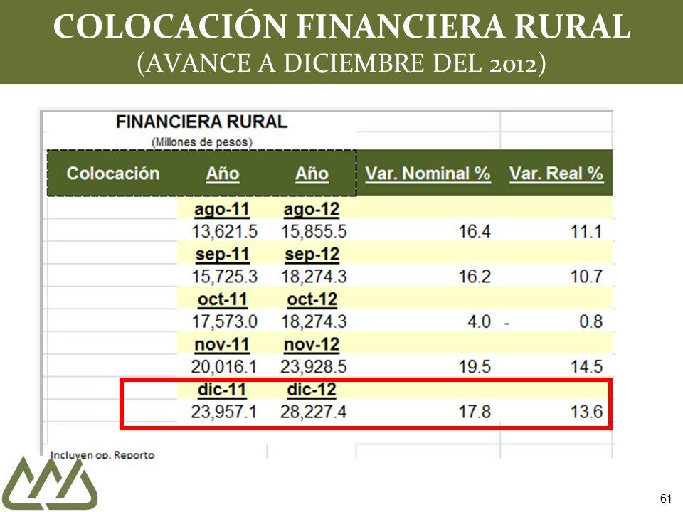 COLOCACIÓN FINANCIERA RURAL (AVANCE A DICIEMBRE DEL 2012) 61