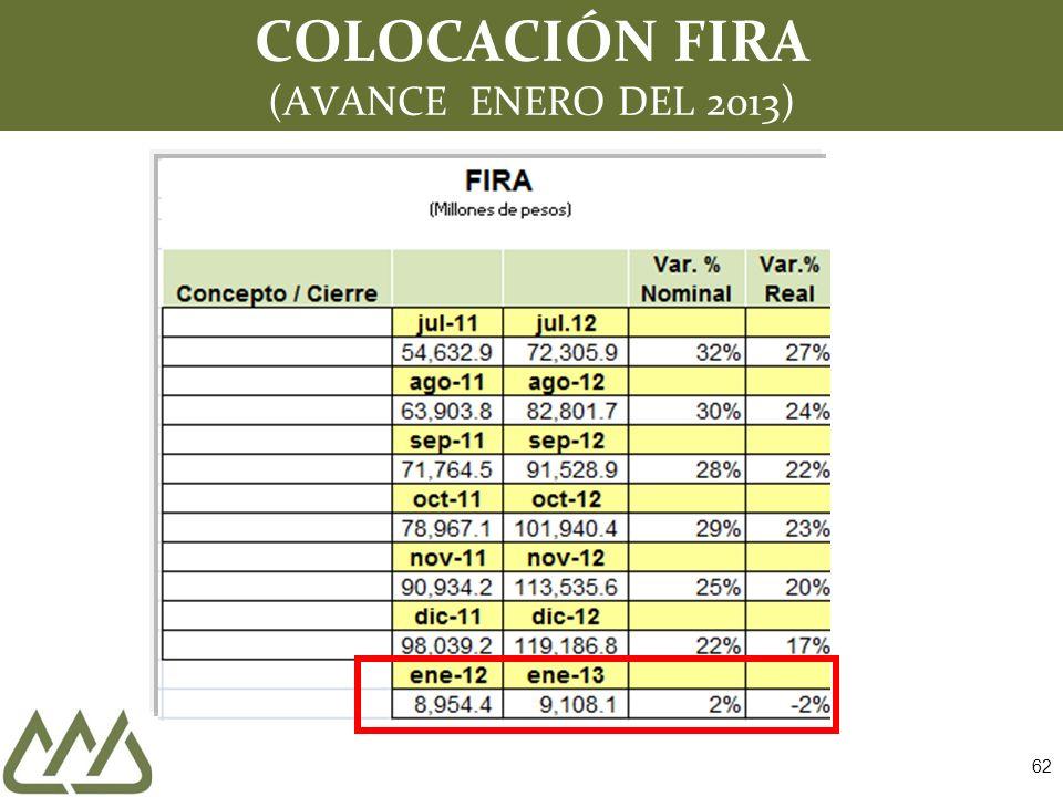 62 COLOCACIÓN FIRA (AVANCE ENERO DEL 2013)