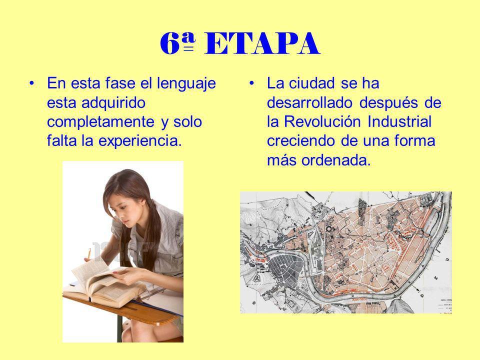 7ª ETAPA En esta última etapa se alcanza la madurez y la experiencia.