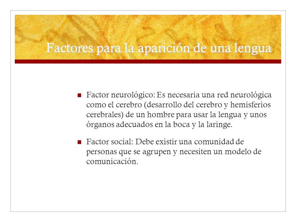 Factores para la aparición de una lengua Factor neurológico: Es necesaria una red neurológica como el cerebro (desarrollo del cerebro y hemisferios ce