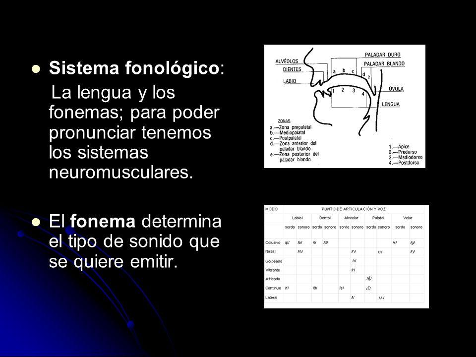 Sistema fonológico: La lengua y los fonemas; para poder pronunciar tenemos los sistemas neuromusculares. El fonema determina el tipo de sonido que se