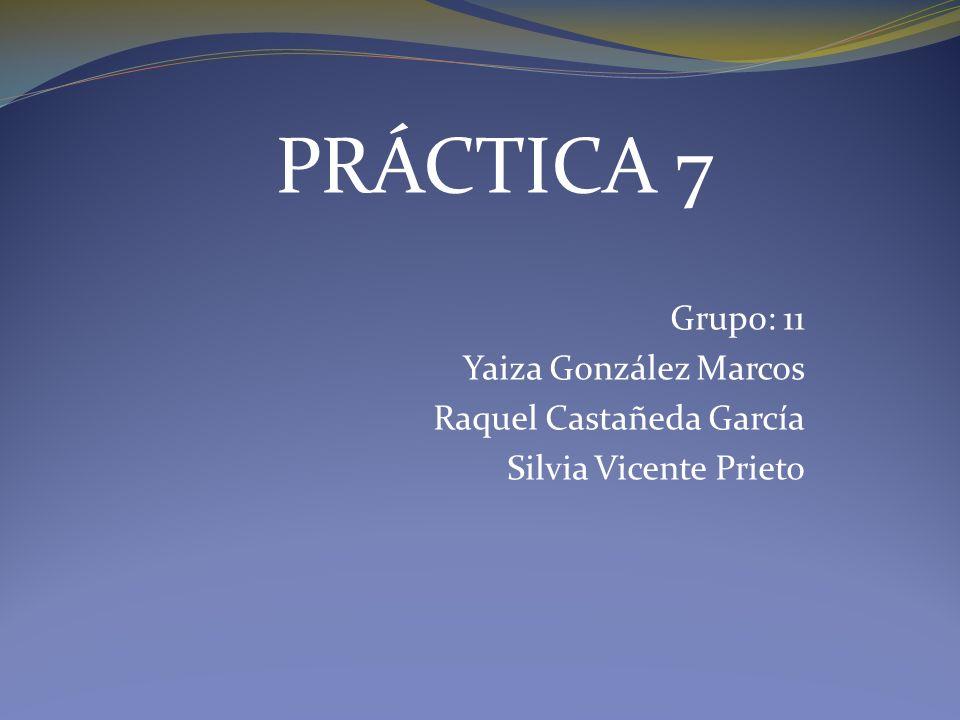 Grupo: 11 Yaiza González Marcos Raquel Castañeda García Silvia Vicente Prieto PRÁCTICA 7