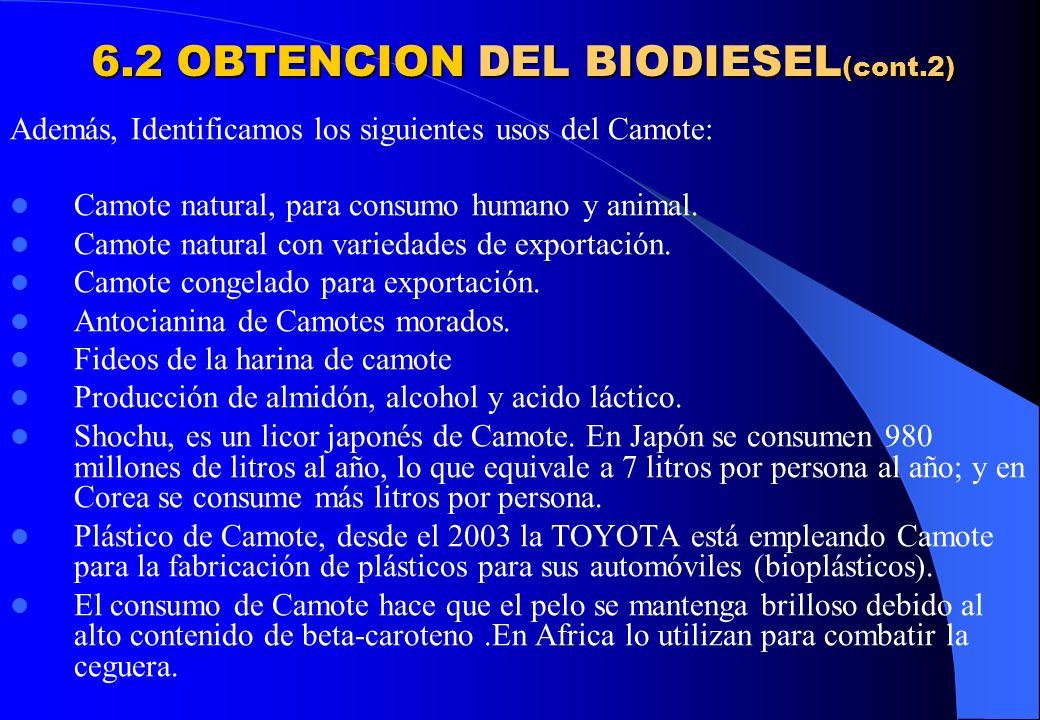 6.2 OBTENCION DEL BIODIESEL (cont.2) Además, Identificamos los siguientes usos del Camote: Camote natural, para consumo humano y animal. Camote natura
