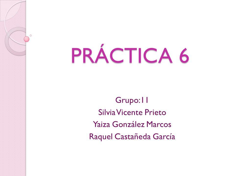 PRÁCTICA 6 Grupo:11 Silvia Vicente Prieto Yaiza González Marcos Raquel Castañeda García
