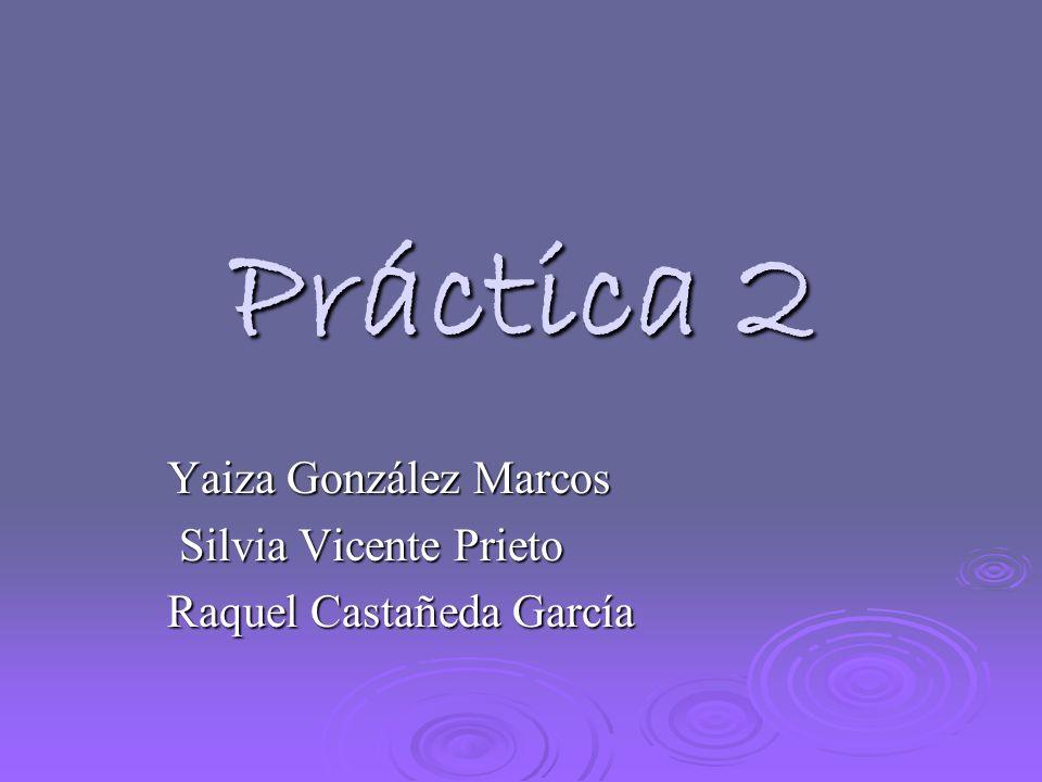 Práctica 2 Yaiza González Marcos Silvia Vicente Prieto Silvia Vicente Prieto Raquel Castañeda García