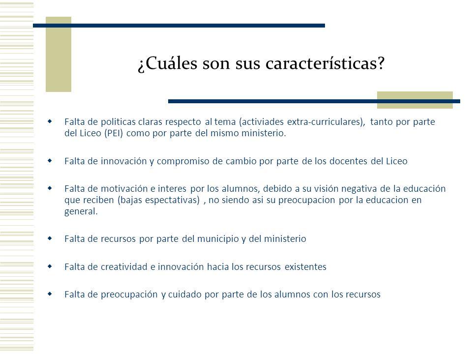 ¿Cuáles son sus características? Falta de politicas claras respecto al tema (activiades extra-curriculares), tanto por parte del Liceo (PEI) como por