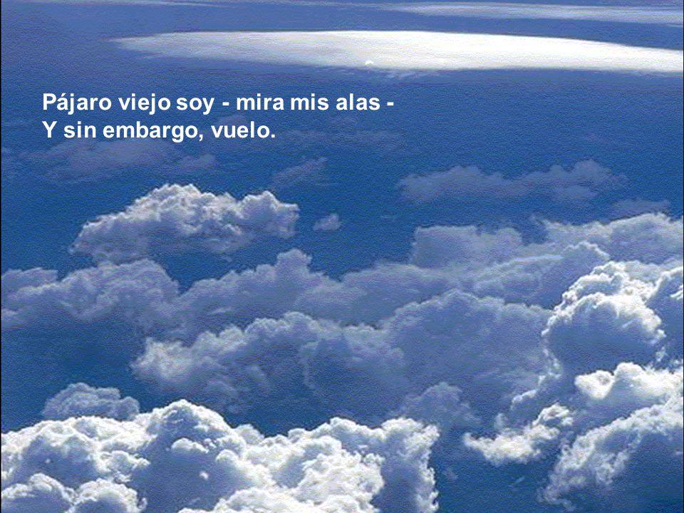 Y volar no es sufrir, es deleitarse; Es navegar, el cielo
