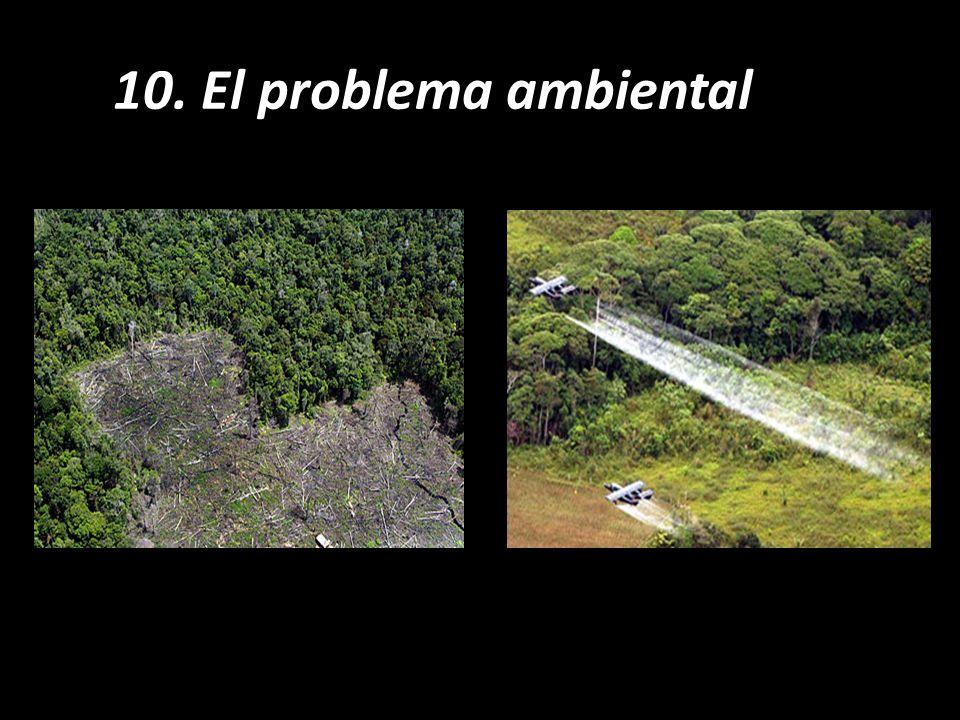 10. El problema ambiental