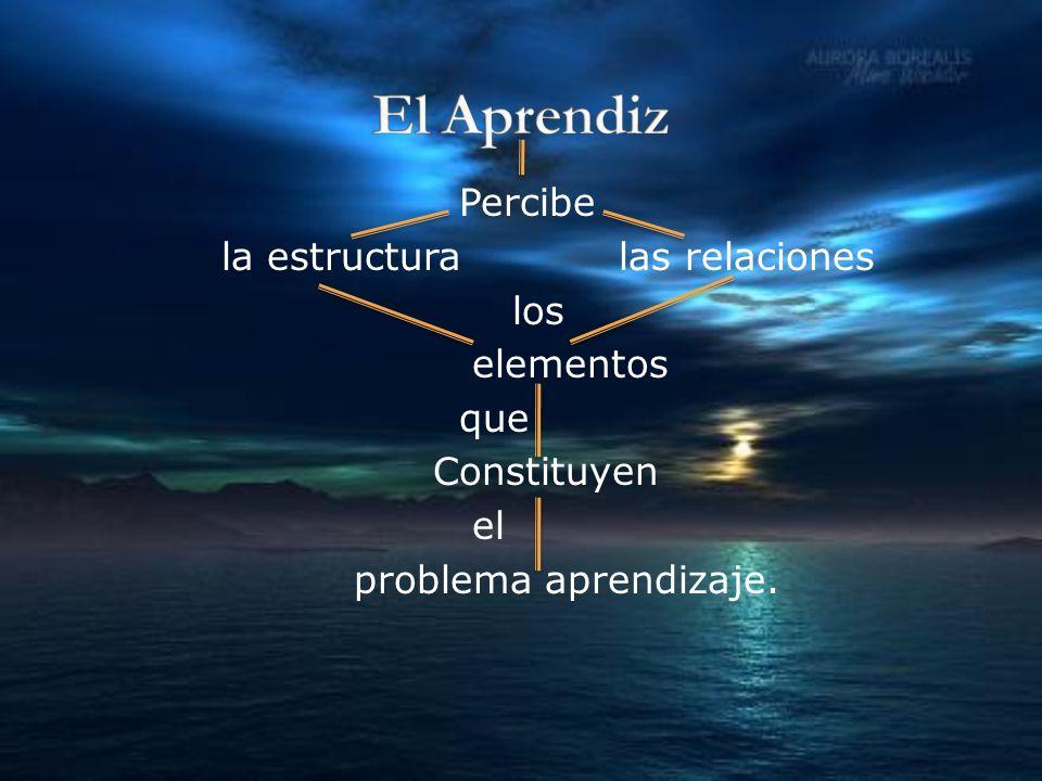 Percibe la estructura las relaciones los elementos que Constituyen el problema aprendizaje.