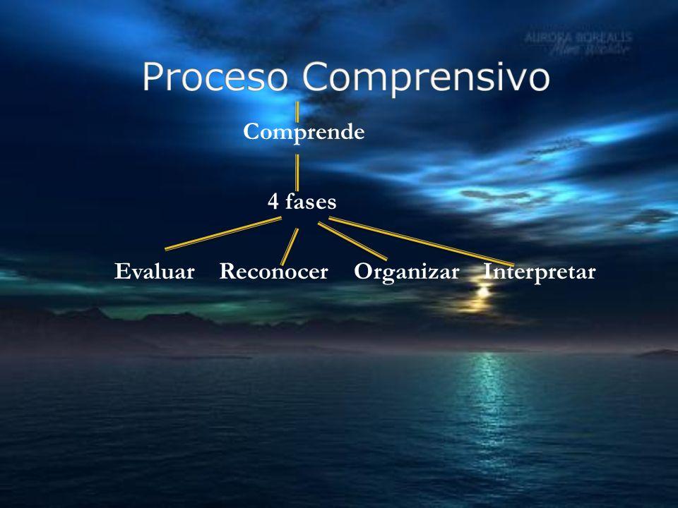 Comprende 4 fases Evaluar Reconocer Organizar Interpretar