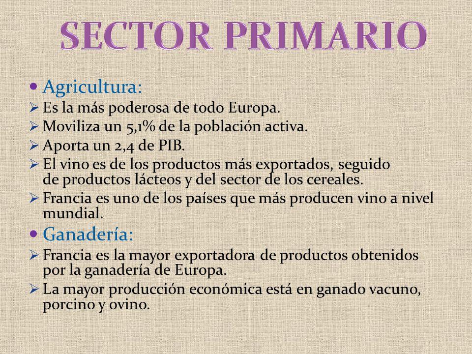 Agricultura: Es la más poderosa de todo Europa. Moviliza un 5,1% de la población activa. Aporta un 2,4 de PIB. El vino es de los productos más exporta
