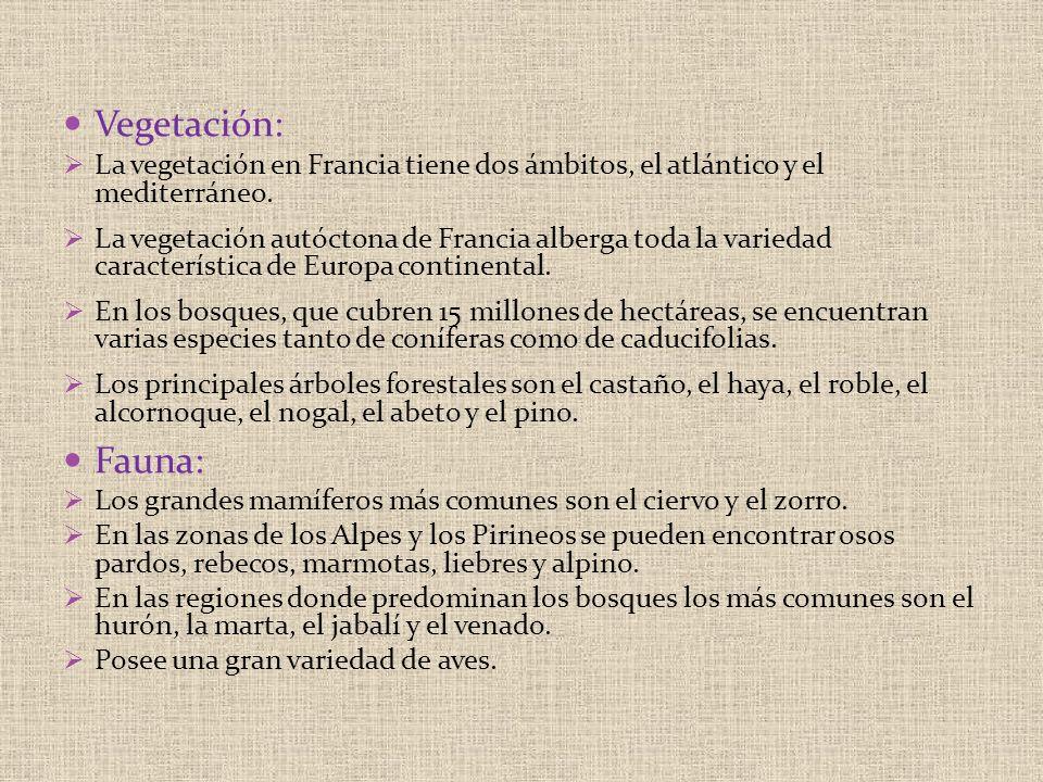 Vegetación: La vegetación en Francia tiene dos ámbitos, el atlántico y el mediterráneo. La vegetación autóctona de Francia alberga toda la variedad ca