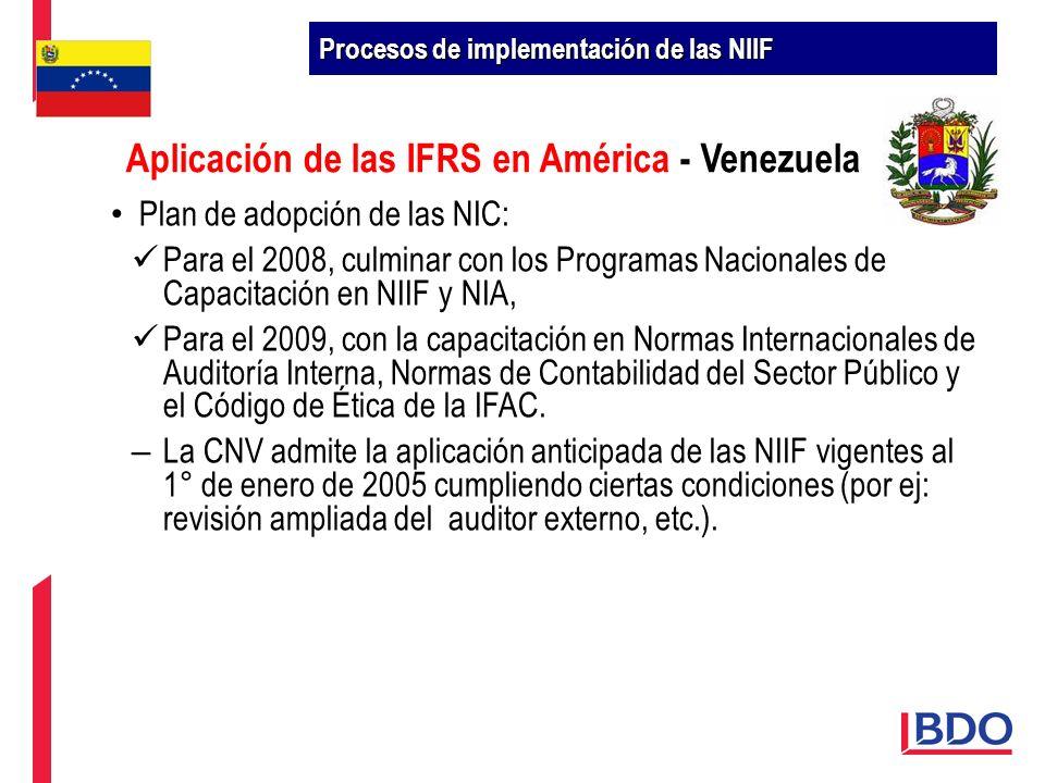 Plan de adopción de las NIC: Para el 2008, culminar con los Programas Nacionales de Capacitación en NIIF y NIA, Para el 2009, con la capacitación en N