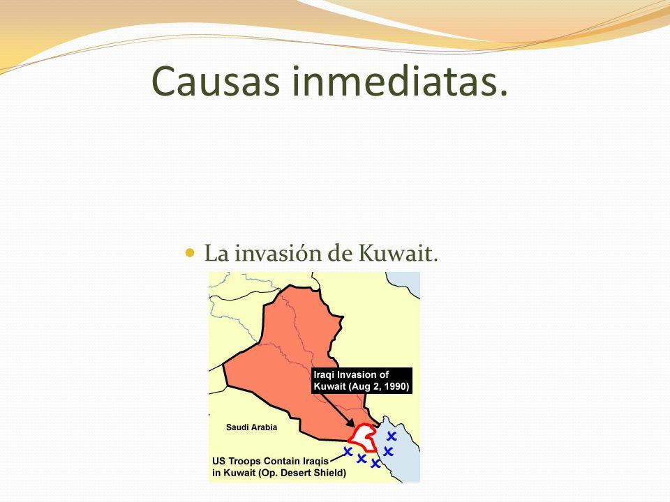 Causas a corto plazo. Necesidad iraquí de acceder al Golfo. Necesidad de mejorar el prestigio.
