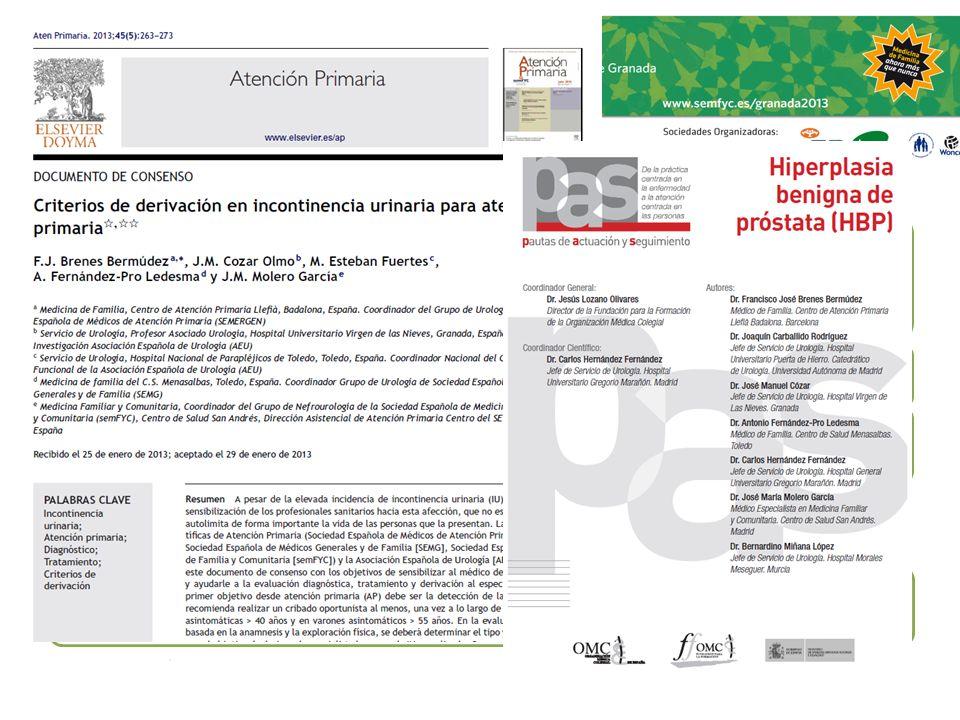 Publicaciones Molero JM, Cózar JM, Esteban M, Fernández Pro A, Brenes FJ. Criterios de derivación en incontinencia urinaria para atención primaria. At