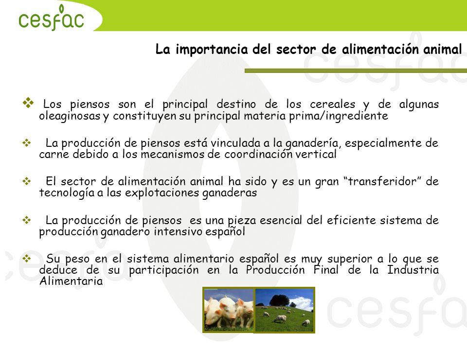 Los piensos son el principal destino de los cereales y de algunas oleaginosas y constituyen su principal materia prima/ingrediente La producción de pi