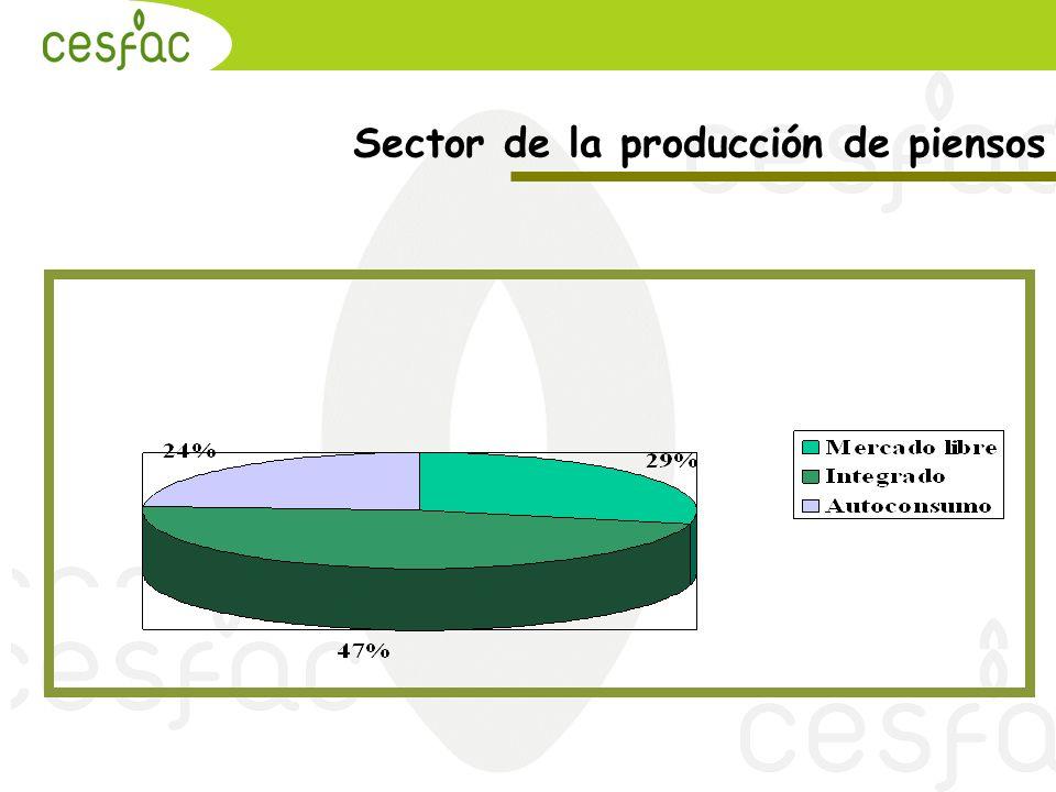 Sector de la producción de piensos