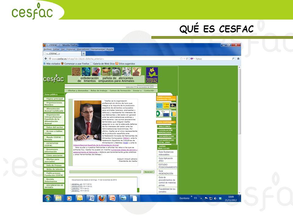 MUCHAS GRACIAS POR SU ATENCIÓN www.cesfac.es cesfac@cesfac.es