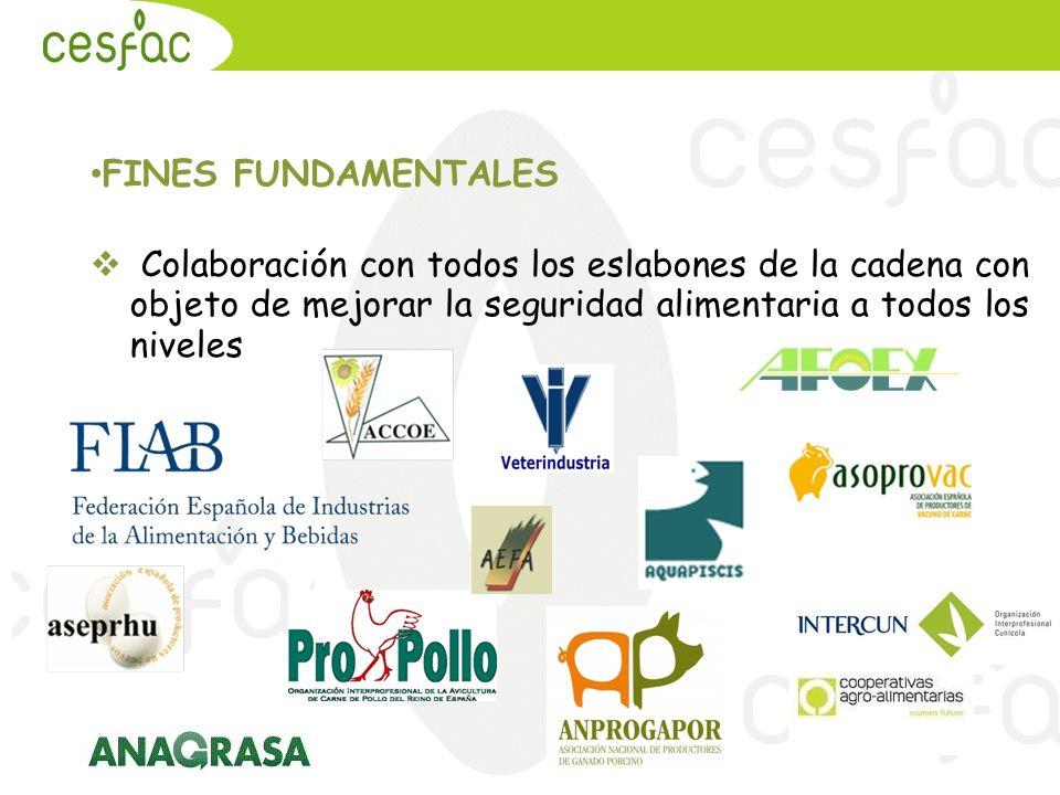 FINES FUNDAMENTALES Colaboración con todos los eslabones de la cadena con objeto de mejorar la seguridad alimentaria a todos los niveles
