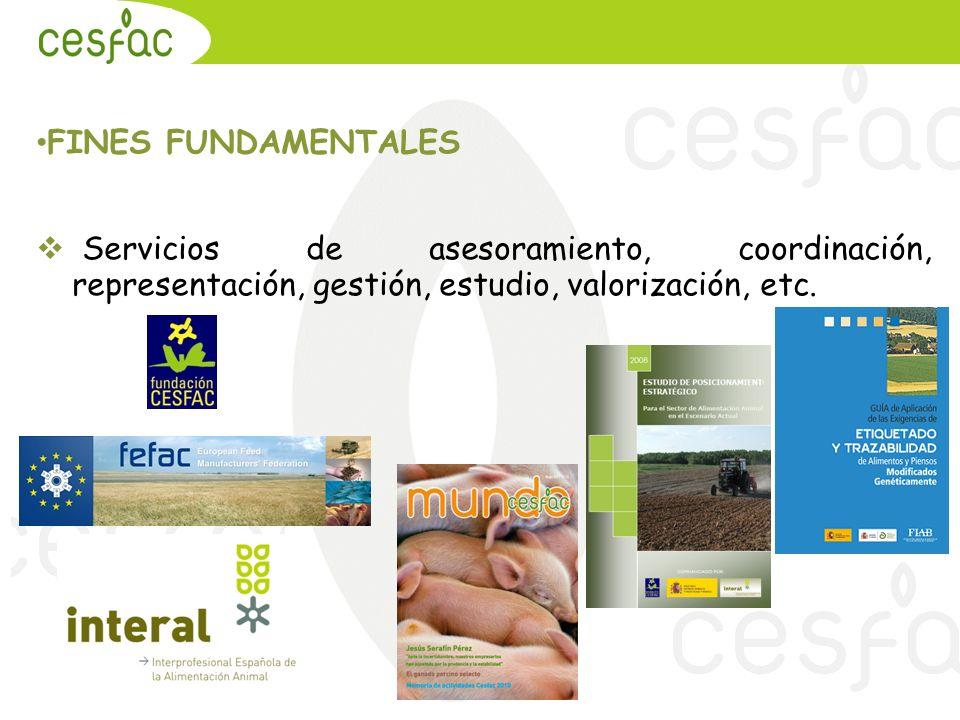 FINES FUNDAMENTALES Servicios de asesoramiento, coordinación, representación, gestión, estudio, valorización, etc.