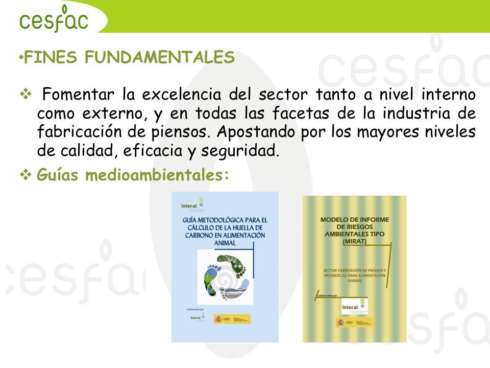 FINES FUNDAMENTALES Fomentar la excelencia del sector tanto a nivel interno como externo, y en todas las facetas de la industria de fabricación de pie