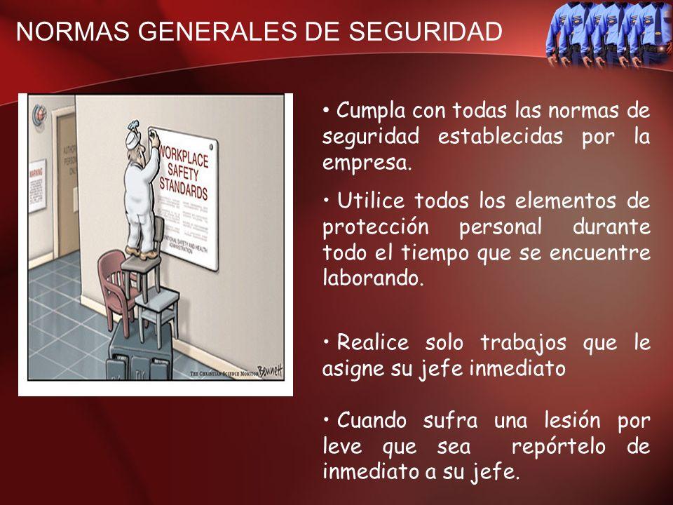 NORMAS GENERALES DE SEGURIDAD Cumpla con todas las normas de seguridad establecidas por la empresa. Utilice todos los elementos de protección personal