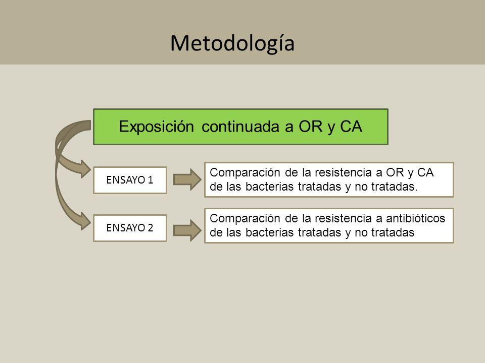 Exposición continuada a OR y CA Comparación de la resistencia a OR y CA de las bacterias tratadas y no tratadas. Comparación de la resistencia a antib