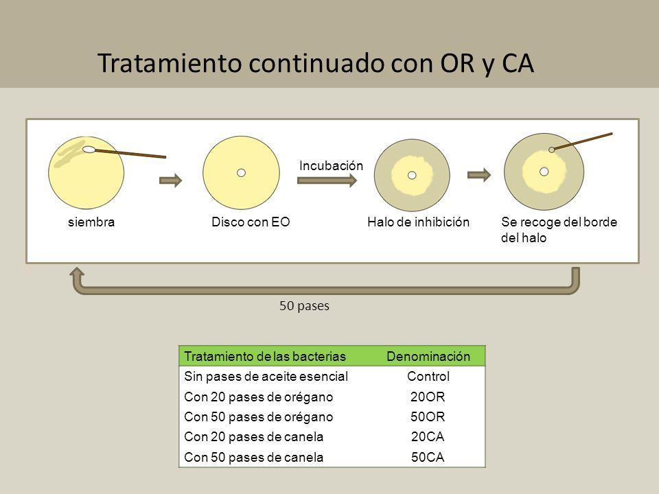 Tratamiento de las bacteriasDenominación Sin pases de aceite esencialControl Con 20 pases de orégano20OR Con 50 pases de orégano50OR Con 20 pases de c