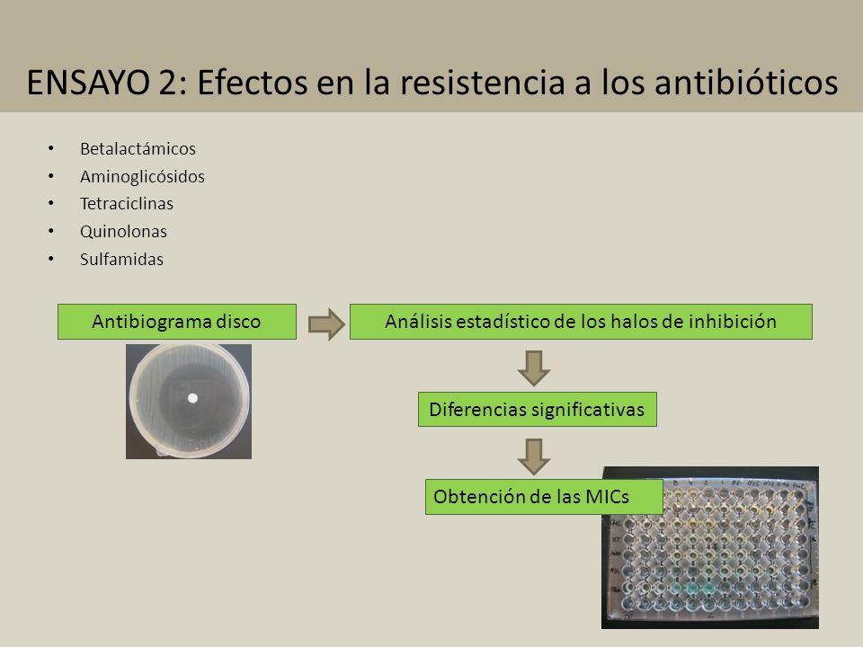 Betalactámicos Aminoglicósidos Tetraciclinas Quinolonas Sulfamidas Antibiograma disco Análisis estadístico de los halos de inhibición Diferencias sign
