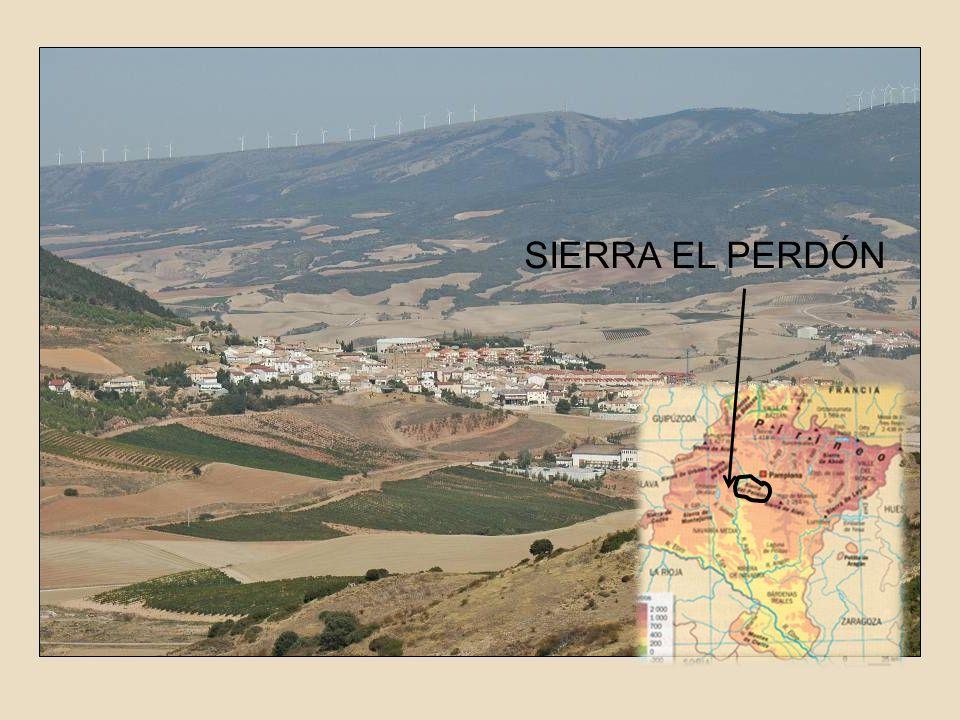 SIERRA EL PERDÓN