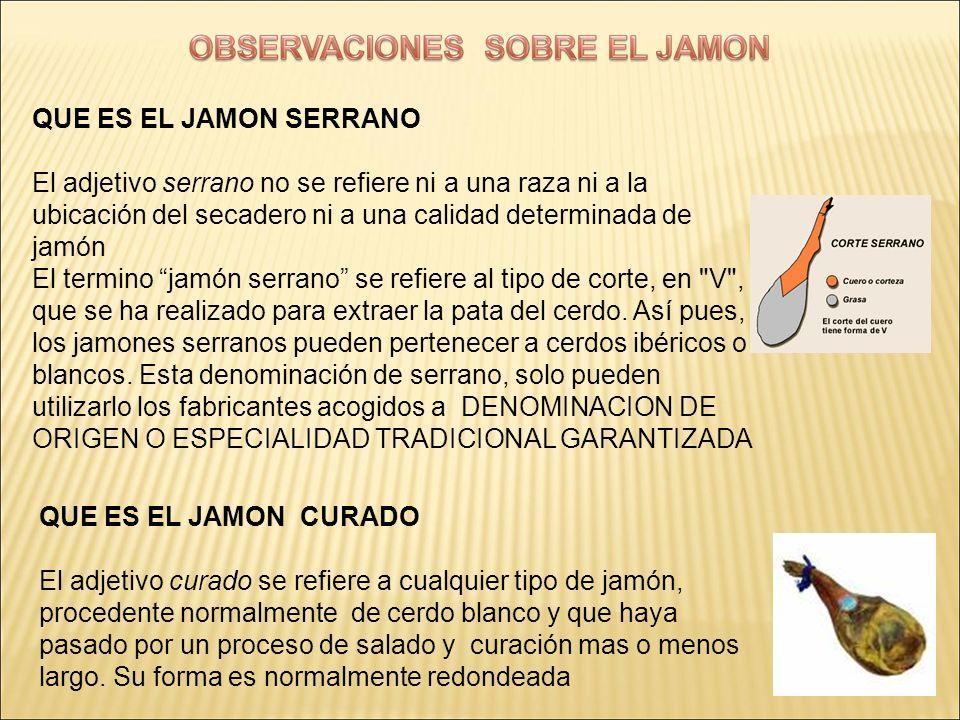 QUE ES EL JAMON CURADO El adjetivo curado se refiere a cualquier tipo de jamón, procedente normalmente de cerdo blanco y que haya pasado por un proces