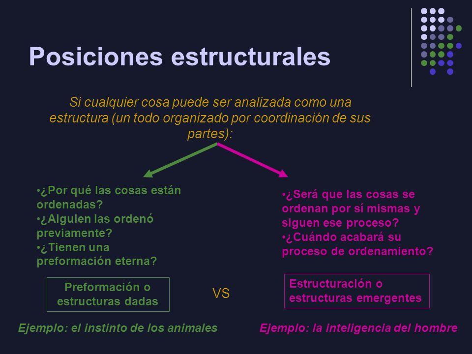 Transformaciones Las totalidades son estructurantes y estructuradas Estructurantes: se mantienen mediante un sistema de transformaciones Estructuradas: parten de un orden mínimo y acumulan los cambios de las transformaciones