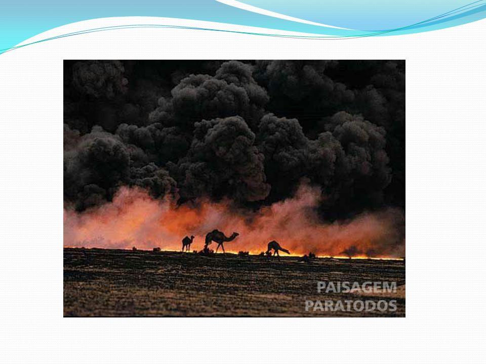Impacto en la población civil Consecuencias medioambientales: Un tema polémico son las consecuencias medioambientales que tuvo este conflicto. Podemos