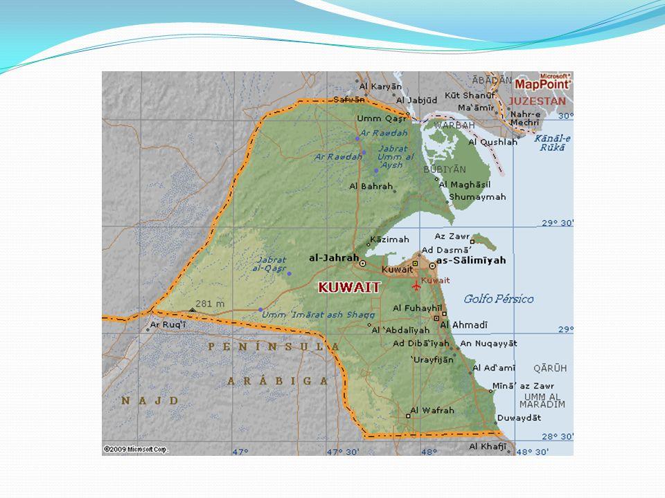 Causas: Próximas Además, otra posible causa era la necesidad iraquí de acceder al Golfo Pérsico desde su puerto de Umm Qasr, lo que implicaba ocupar l