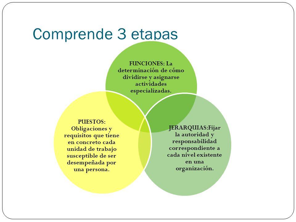 Comprende 3 etapas FUNCIONES: La determinación de cómo dividirse y asignarse actividades especializadas. JERARQUIAS:Fijar la autoridad y responsabilid