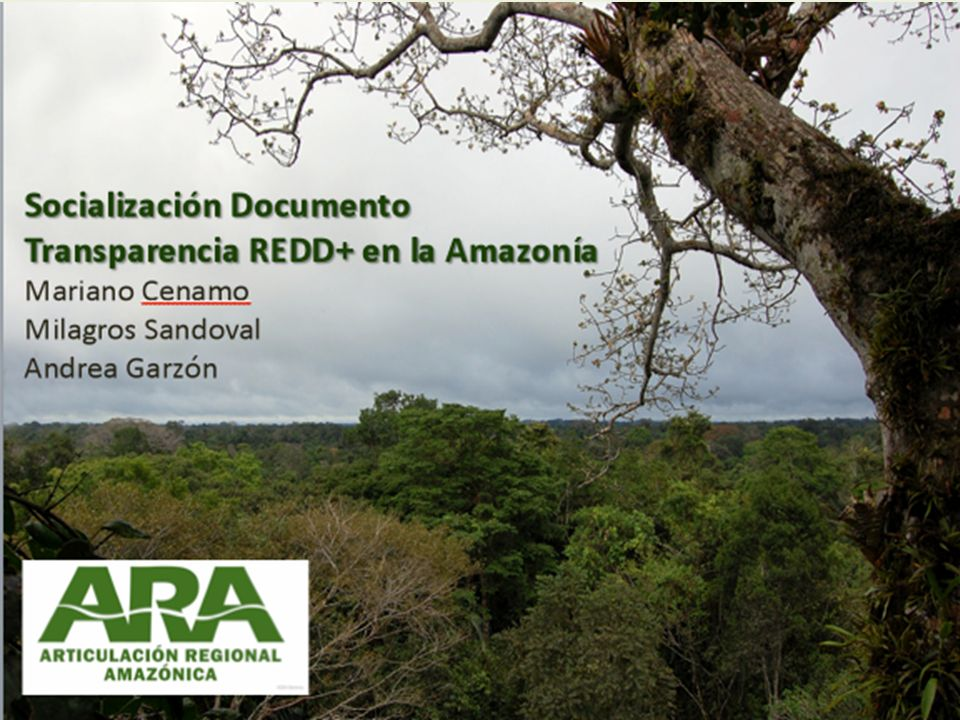 Guyana País con alta cobertura boscosa aun conservada y bajos niveles de deforestación.