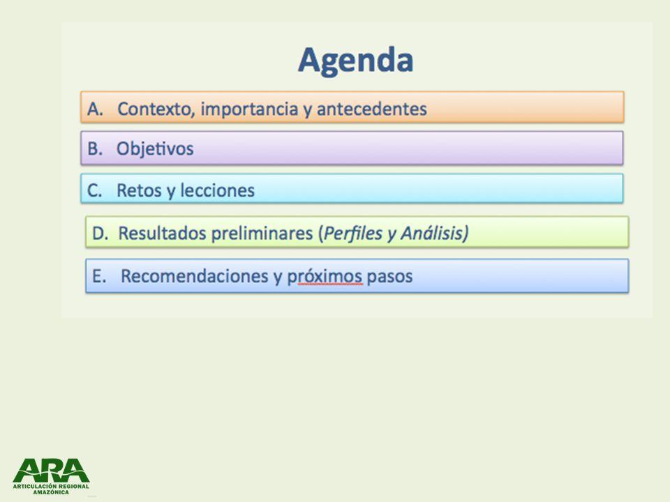 Contexto e Importancia Antecedentes: – Septiembre 2009 : En Anapoima (5ta reunión de ARA Regional) se definió el Grupo de Trabajo en REDD (Andrea, Milagros y Mariano) – Diciembre 2009: Aprobada propuesta de trabajo por el Comité Directivo ARA – Enero 2010: Inicio de los trabajos Capitulo 1: Contexto nacional Capitulo 2: Enfoque REDD Capitulo 3: Consolidacion, analisis, recomendaciones A.