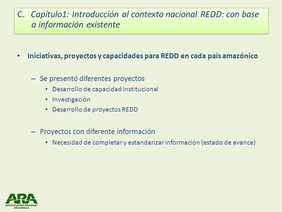 Iniciativas, proyectos y capacidades para REDD en cada país amazónico – Se presentó diferentes proyectos Desarrollo de capacidad institucional Investi